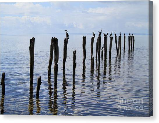 Sticks Out To Sea Canvas Print