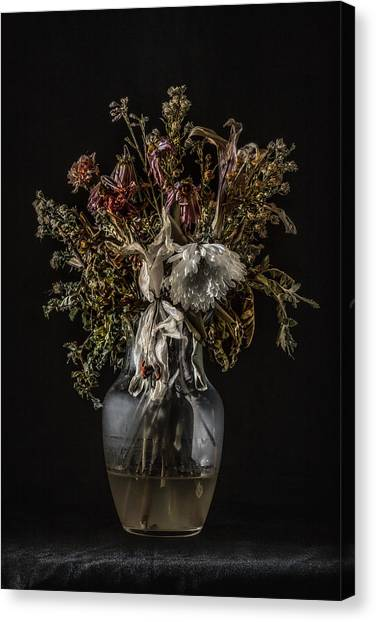 Still Life #1 Canvas Print