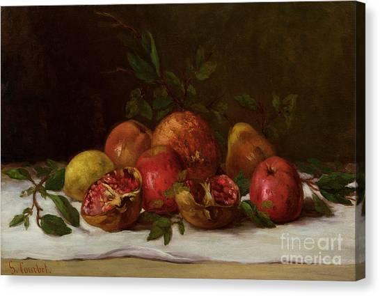 Pom-pom Canvas Print - Still Life by Gustave Courbet
