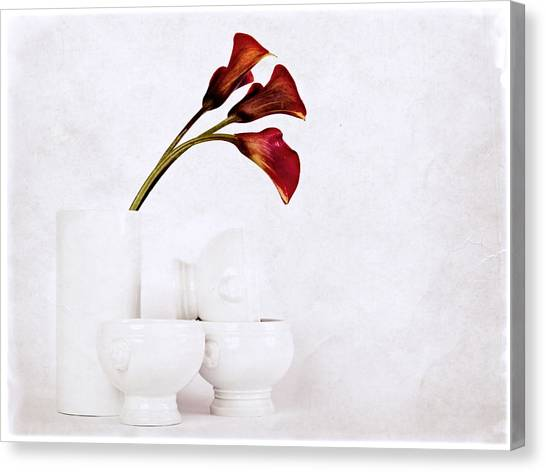Canvas Print featuring the photograph Still Life IIi by Stefan Nielsen