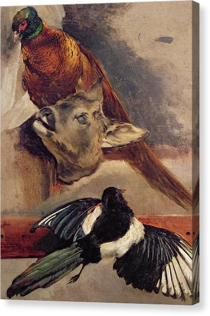 Magpies Canvas Print - Still Life Of Game by Theodore Gericault