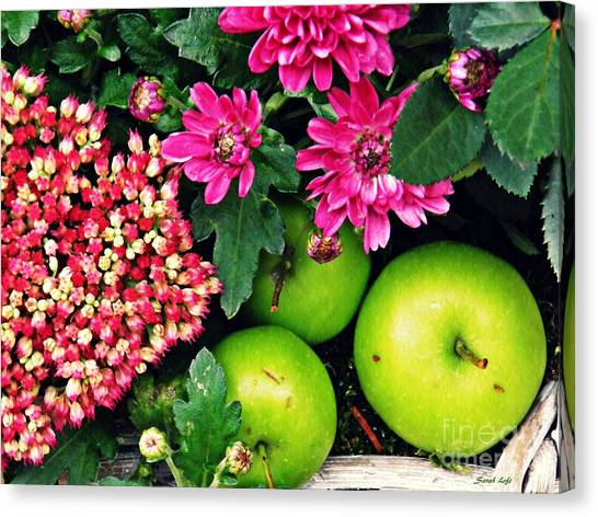 Canvas Print - Still Life With Green Apples  by Sarah Loft