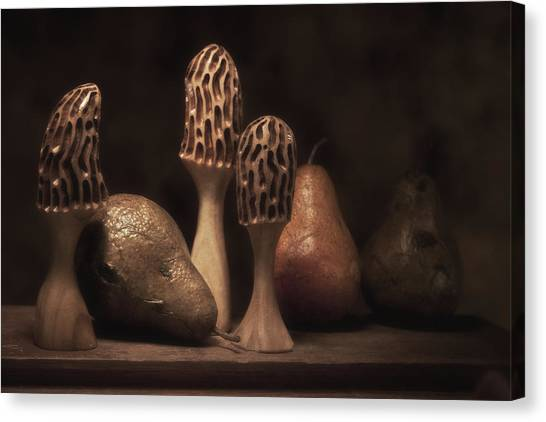 Mushrooms Canvas Print - Still Life With Mushrooms And Pears II by Tom Mc Nemar