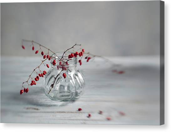 Twig Canvas Print - Still Life With Red Berries by Nailia Schwarz