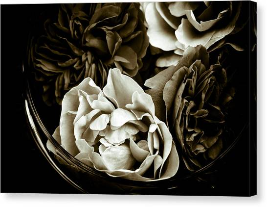 Still Life With Roses Canvas Print by Frank Tschakert