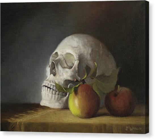 Still Life With Skull Canvas Print
