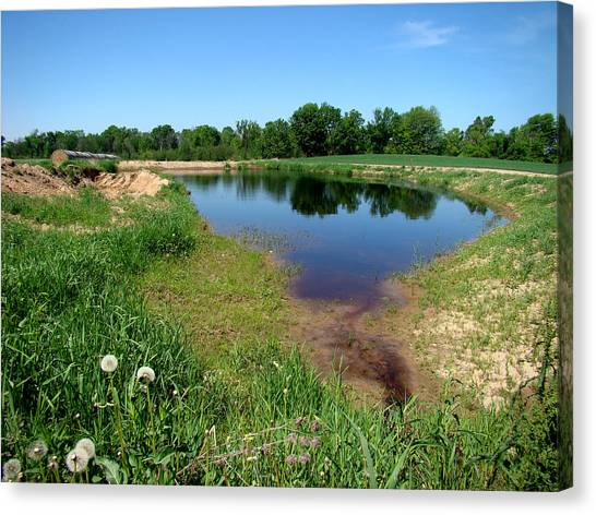 Still Pond Reflections Canvas Print by Todd Zabel