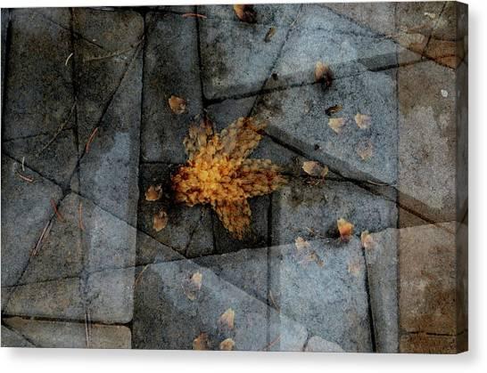 Stone Life Canvas Print