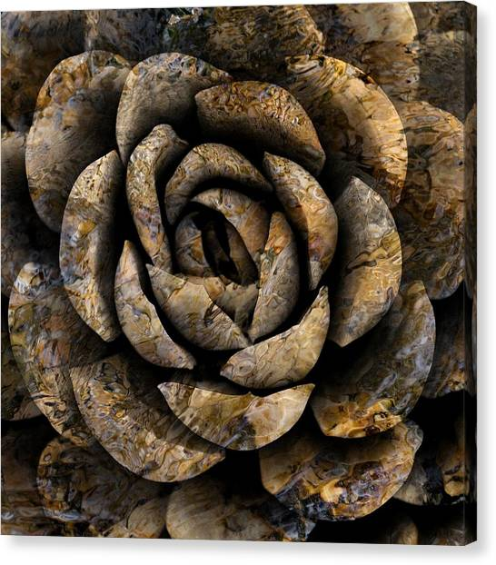 Canvas Print featuring the photograph Stone Rose by Dutch Bieber