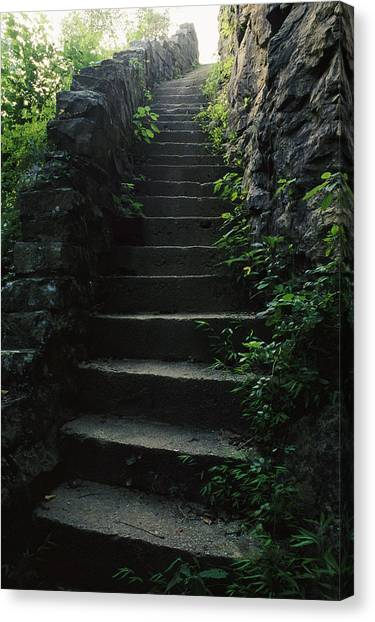 The University Of Tennessee Canvas Print - Stone Stairs Lead To The Top Of Morgans by Stephen Alvarez