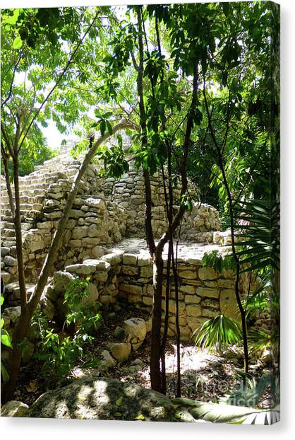 Canvas Print - Stone Steps In The Jungle by Francesca Mackenney