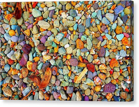 Stones And Barks On Beach Canvas Print