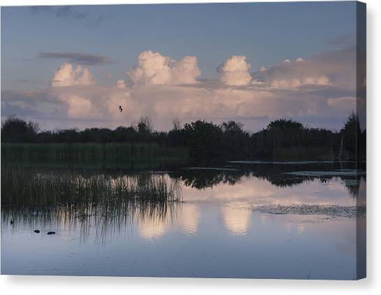 Storm At Sunrise Over The Wetlands Canvas Print