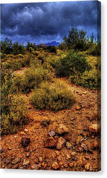 Storm Clouds Over The Sonoran Desert In Spring Canvas Print