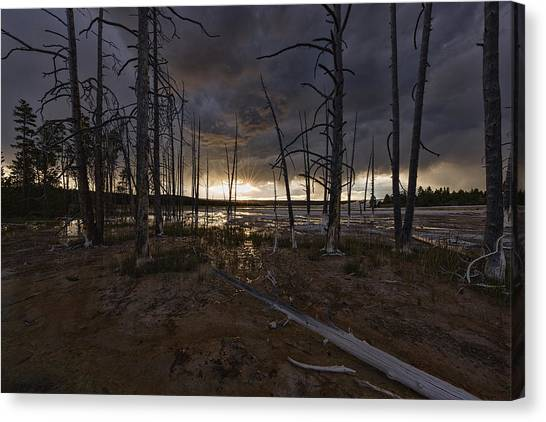 Storm Over Lower Geyser Basin Canvas Print