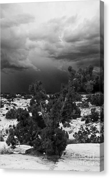Storm Over Sand Bench Utah Canvas Print by John Hermann