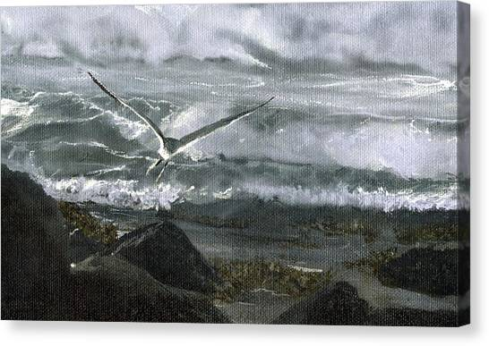 Stormy Flight 2  Canvas Print by Charles Parks