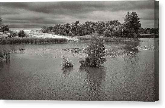 Stormy Lake. Malyi Lystven, 2013. Canvas Print