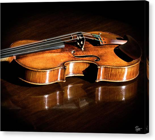 Stradivarius In Sunlight Canvas Print