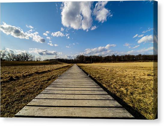 Straight And Narrow Canvas Print