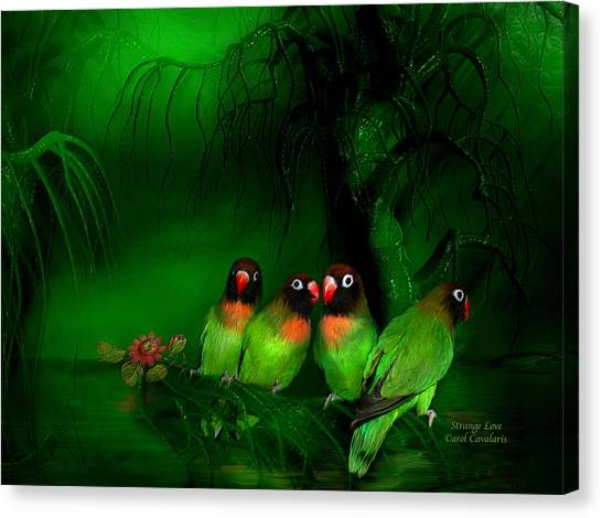 Lovebirds Canvas Print - Strange Love by Carol Cavalaris