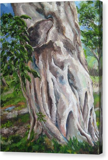Strangler Fig Canvas Print