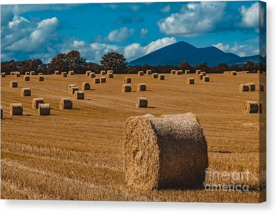 Straw Bale In A Field Canvas Print