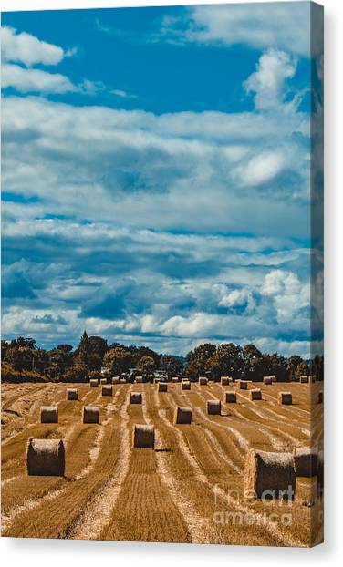 Straw Bales In A Field 2 Canvas Print