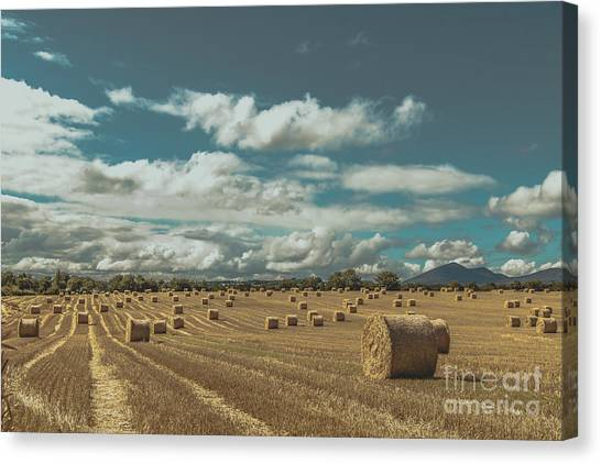 Straw Bales In A Field 3 Canvas Print