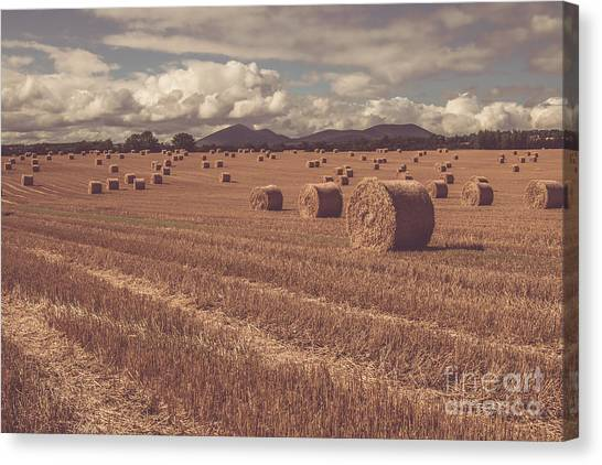 Straw Bales In A Field 4 Canvas Print
