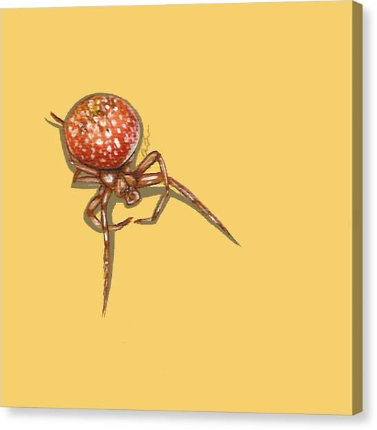 Strawberry Spider Canvas Print
