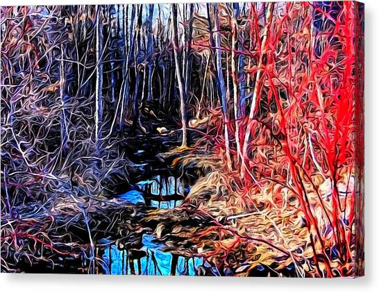 Stream Red And Blue Canvas Print