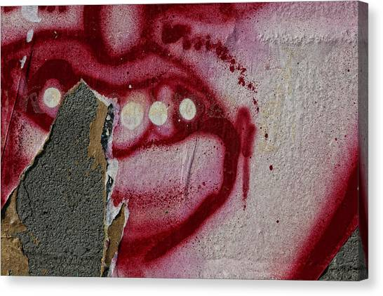 Street Art Wiiliamsburg Brooklyn 2 Canvas Print by Robert Ullmann