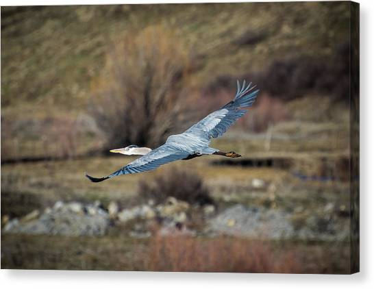 Stretched Wide Open Canvas Print