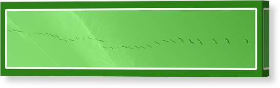 String Of Birds In Green Canvas Print
