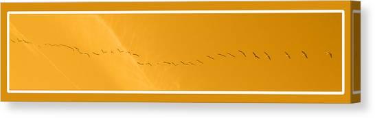 String Of Birds In Orange Canvas Print