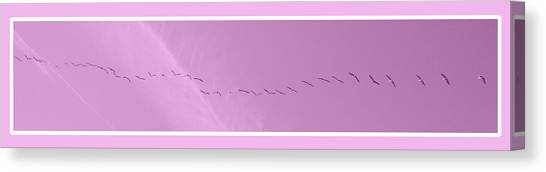 String Of Birds In Rose Pink Canvas Print