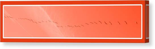 String  Of Brids In Red Canvas Print