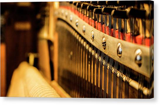 Ivory Canvas Print - Strings by Keith Sutton