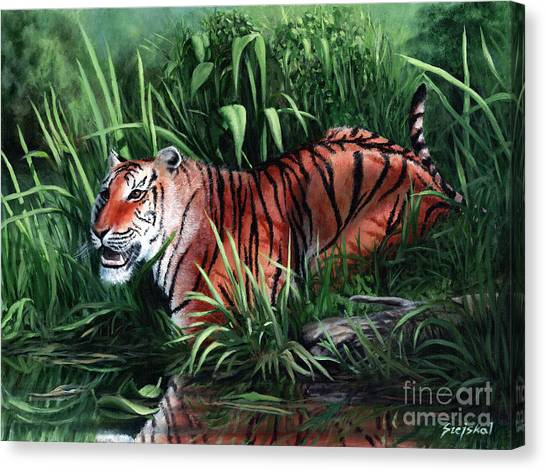 Stripes Canvas Print by Bretislav Stejskal