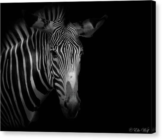 Stripes Number 5 Canvas Print