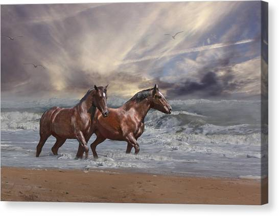 Strolling On The Beach Canvas Print