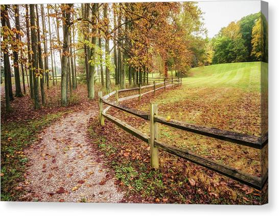 Swamps Canvas Print - Strolling Through Autumn by Tom Mc Nemar
