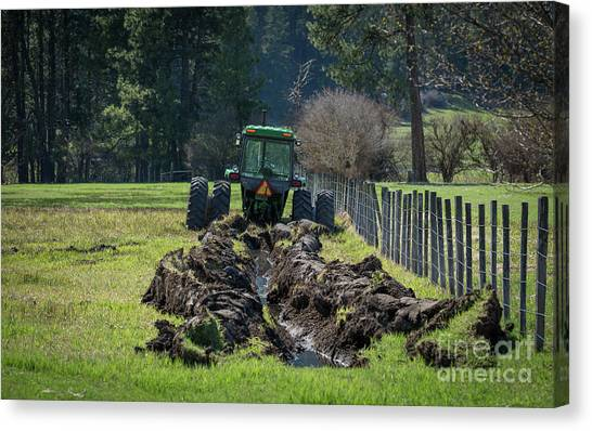 Stuck In The Muck Agriculture Art By Kaylyn Franks Canvas Print