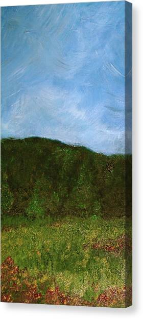 Study In Light Five Canvas Print by Karen Fowler