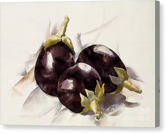 Precisionism Canvas Print - Study Of 3 Eggplants After Charles Demuth by Misha Ambrosia