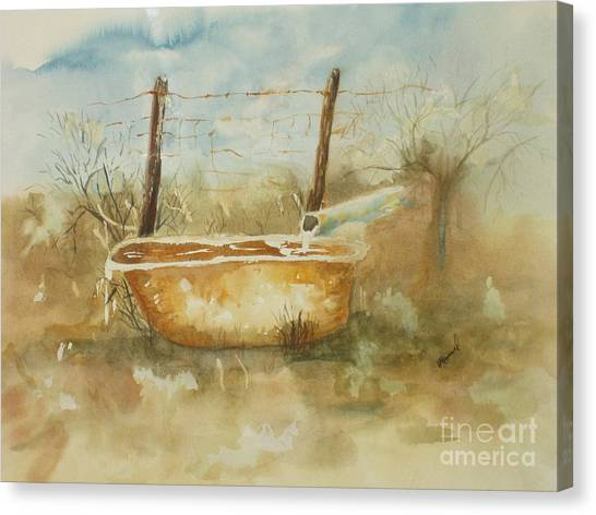 Study Of A Watering Tub Canvas Print