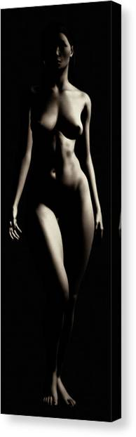Canvas Print featuring the photograph Study Of Carine Frontside by Jan Keteleer
