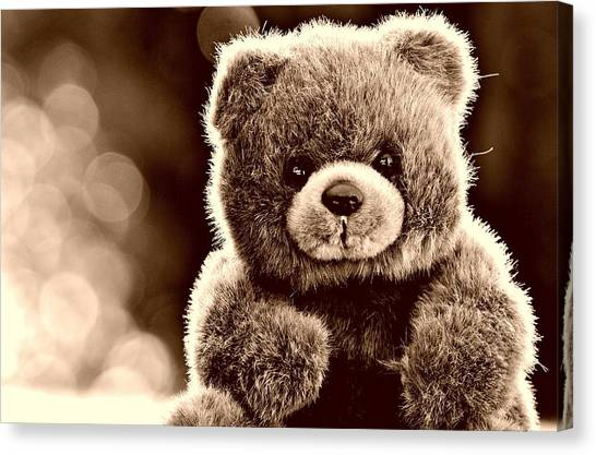 Teddy Bears Canvas Print - Stuffed Animal by Maye Loeser