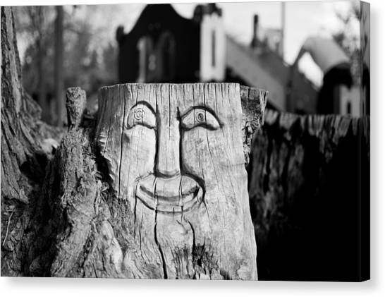 Stump Face 1 Canvas Print